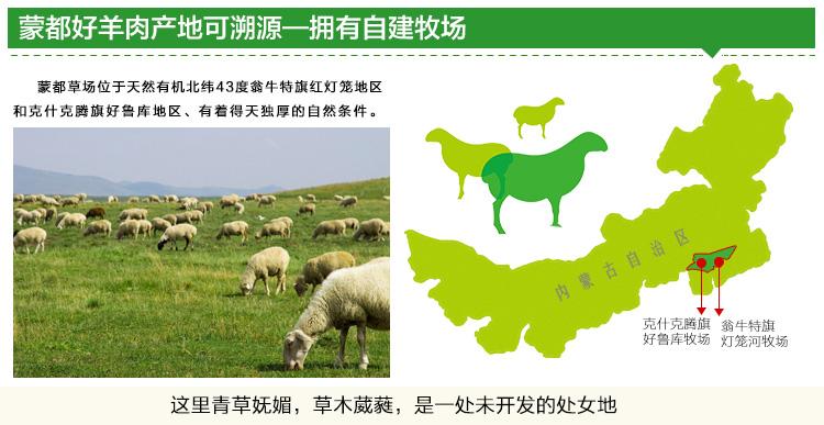 蒙古羊手绘